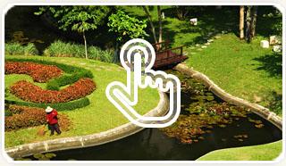 Школа ландшафтного дизайна и школа дизайна интерьера в Спб